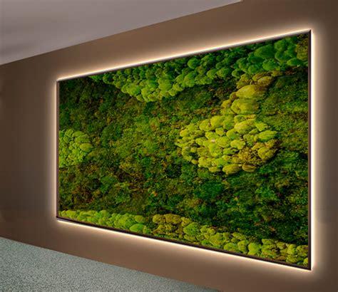 Moosbilder Für Die Wand by Licht Moosw 228 Nde Und Moosbilder Vom Begr 252 Nungsprofi