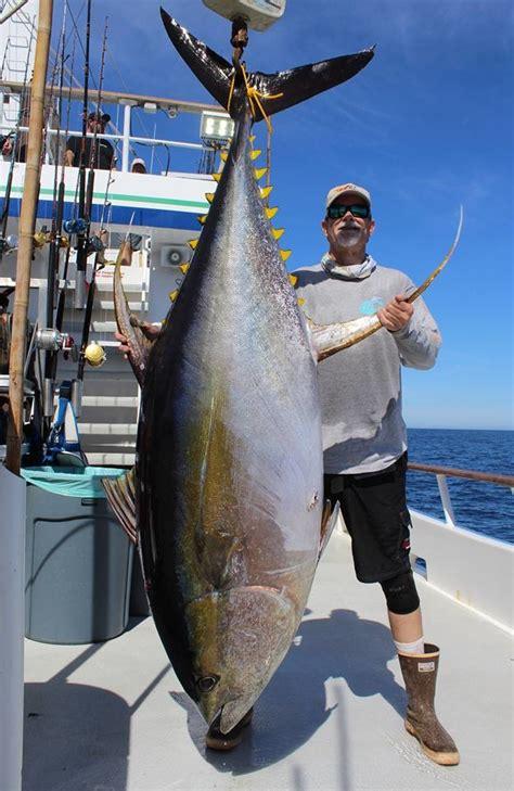 Big Tuna Fishing Report - November 09, 2017 | FISHTRACK.COM
