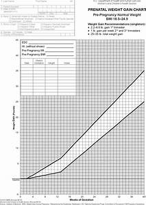 Premature Weight Gain Chart 3 Sample Baby Weight Gain Charts Free Download