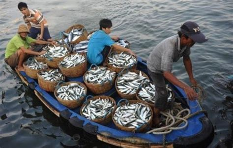 cooperation  east sea fisheries management
