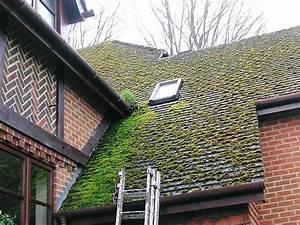 Demoussage Toiture Ardoise : avant et apres le nettoyage de la toiture demoussage et ~ Premium-room.com Idées de Décoration