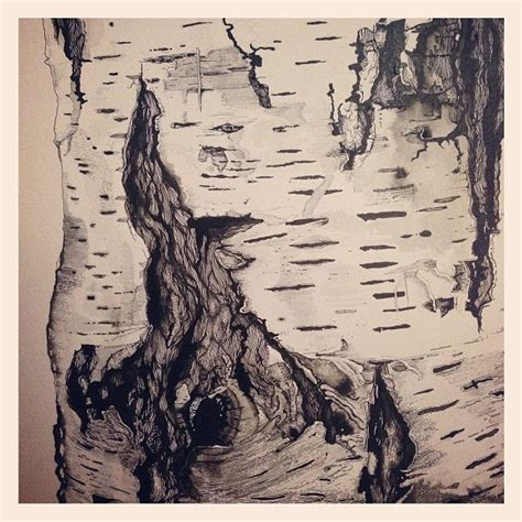 oak bark drawing google search tree sketches tree