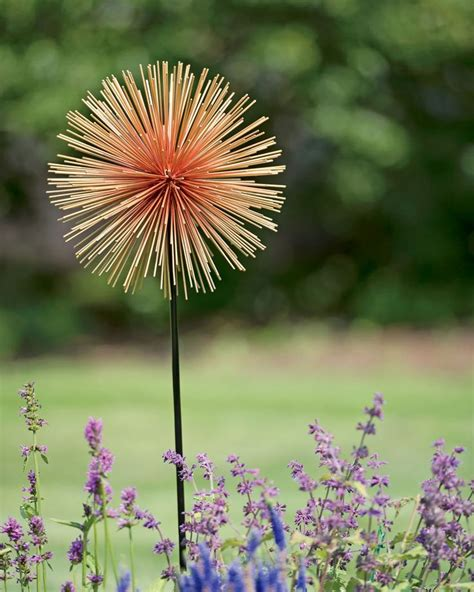 25 best ideas about allium flowers on purple