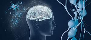 Institute of Cognitive Science (ICS) - Carleton University