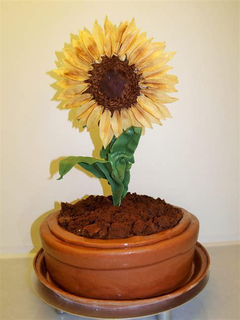 3 D Torte   Sonnenblume   il massimo