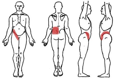 Massage therapy for upper back pain. Pin on Kidney Diagram Anatomy