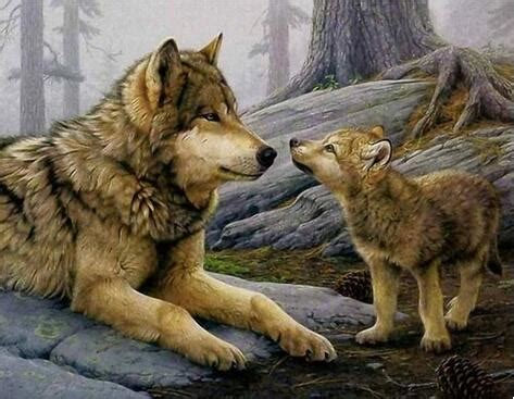 wolf mother  wolf baby diy acrylic painting  numbers
