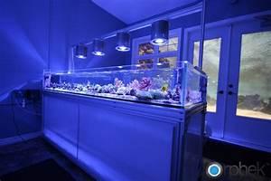 Aquarium Led Beleuchtung : 301 moved permanently ~ Frokenaadalensverden.com Haus und Dekorationen