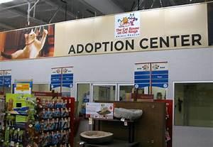 dog adoption center