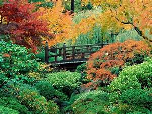 Nature: Japanese Garden Washington Park Portland Oregon ...