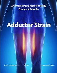 Comprehensive Treatment Guides - 5 Pack  2