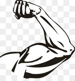 arm computer icons biceps muscle clip art strong png