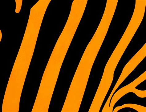 Orange Animal Print Wallpaper - tiger background free stock photo domain pictures