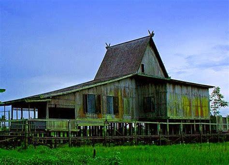 gambar indonesia rumah honai adat provinsi papua mewarnai