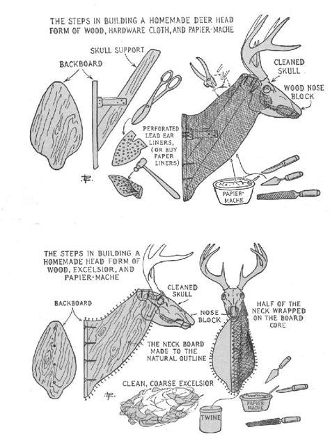 paper mache deer head diy instructions guide patterns