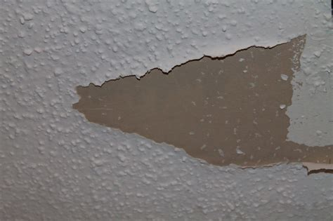 artex ceiling  asbestos  www