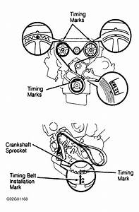 1994 Lexus Es 300 Serpentine Belt Routing And Timing Belt
