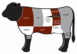 Ngo Your Meal  All The Different Cuts Of The Cow Part 1