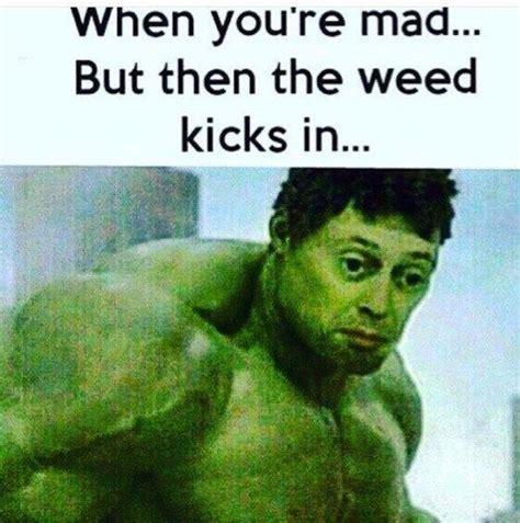 Top 5 Memes - the top 5 best blogs on stoner memes