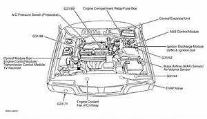 2001 Land Rover Discovery Engine Diagram