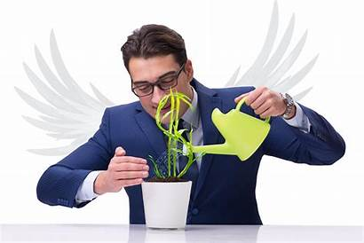 Funding Angel Investors Potential Investing Investor Cryptocurrency