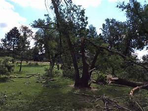 Brief Tornado And Straight Line Wind Damage Near Brookings  Sd