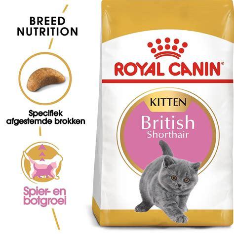 royal canin kitten shorthair royal canin shorthair kitten kattenvoer goedkoop