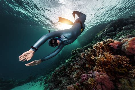 dive skins a guide to buying your freediving wetsuit