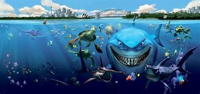 Nemo Finding Underwater Ocean Fish Sea Turtle