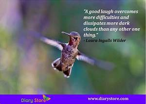 Humor Quotes | Humour Quotes | Inspirational Humor Quotations