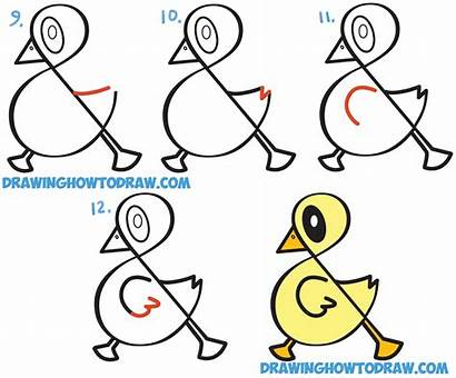 Duck Easy Drawing Draw Step Cartoon Symbol