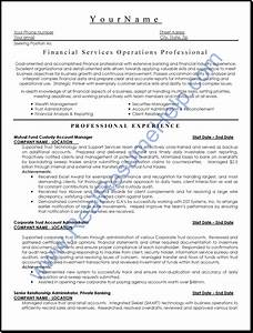 financial services operation professional resume sample With www professional resume com
