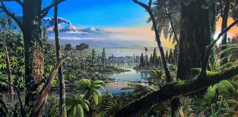 scientists find evidence  ancient tropical rainforest