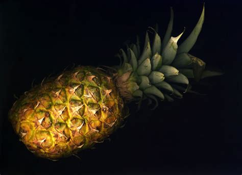 pineapple  stock photo public domain pictures