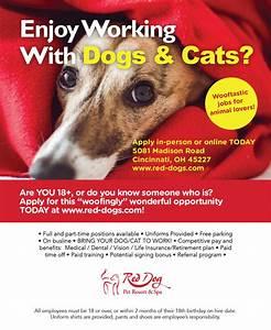 Apply red dog pet resort spa dog boarding dog for Red dog daycare