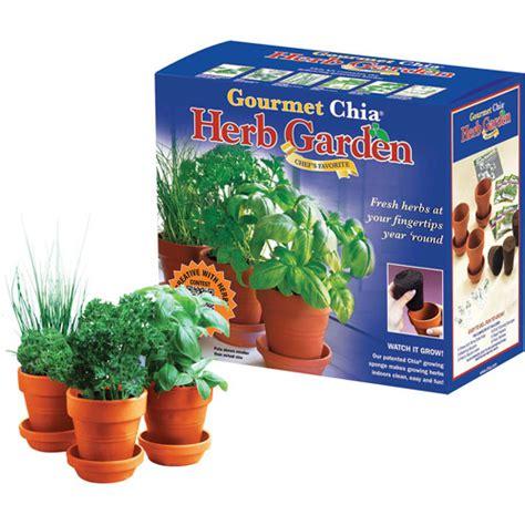 chia herb garden as seen on tv chia herb garden walmart
