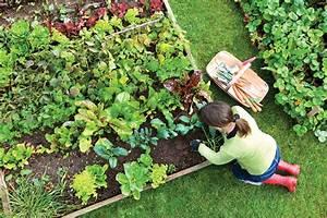 gardening for a better home archives uk living blog