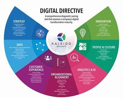 Digital Transformation Insights Company Directive Evaluation Roadmap