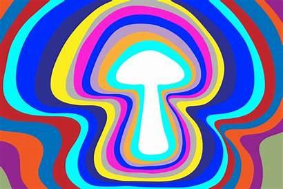 Psychedelic Trippy Eve Mushroom Debate Mushrooms Drug