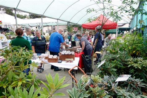 28 north wales garden centres to visit this spring daily