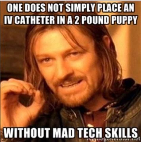 Vet Tech Memes - 1000 images about vet tech on pinterest dog anatomy veterinary technician and for dogs