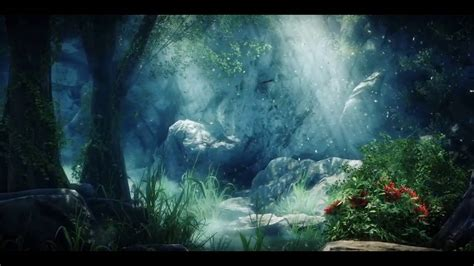 Animated Forest Wallpaper - forest animation background