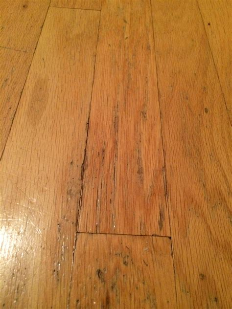 how to restore wood floors how to fix water damaged wood floor 4 the minimalist nyc