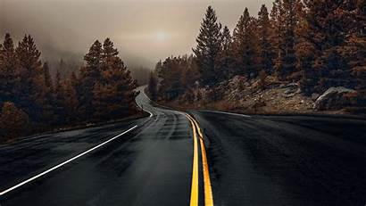 Road Wallpapers Fog Trees Wet Morning Woods
