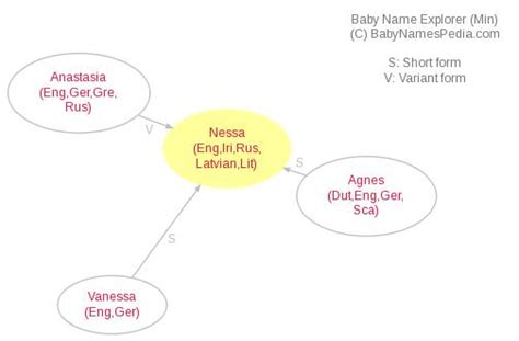 Meaning Of Nessa, What Does Nessa Mean?