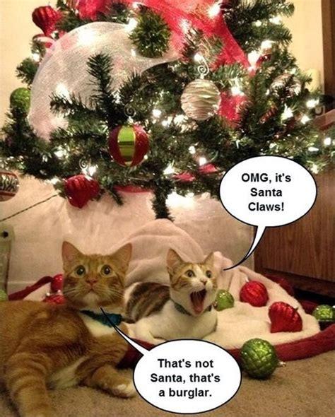 Christmas Animal Meme - animals and christmas funny animal meme collection 14 pictures animal space