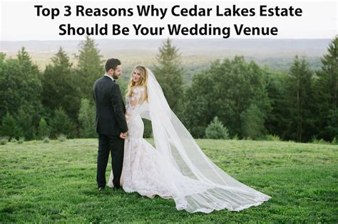Top Three Reasons Why Dino Top 3 Reasons Why Cedar Lakes Estate Should Be Your