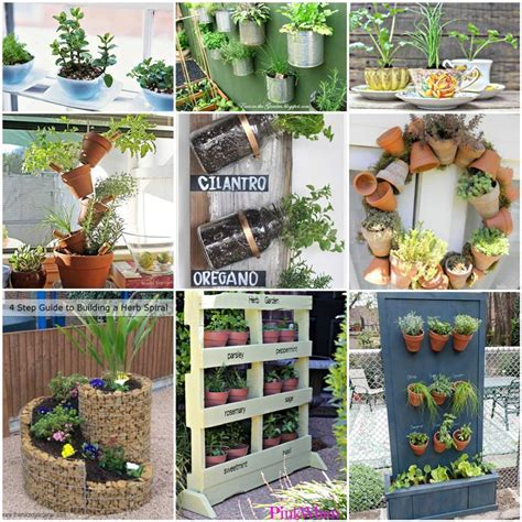 Good Area Potted Herb Garden Ideas