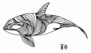 52-whale-line-drawing jpg (2545×1491) Line drawings