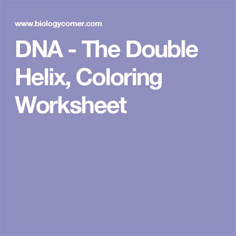 dna  double helix coloring worksheet color